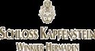 logo_kapfenstein